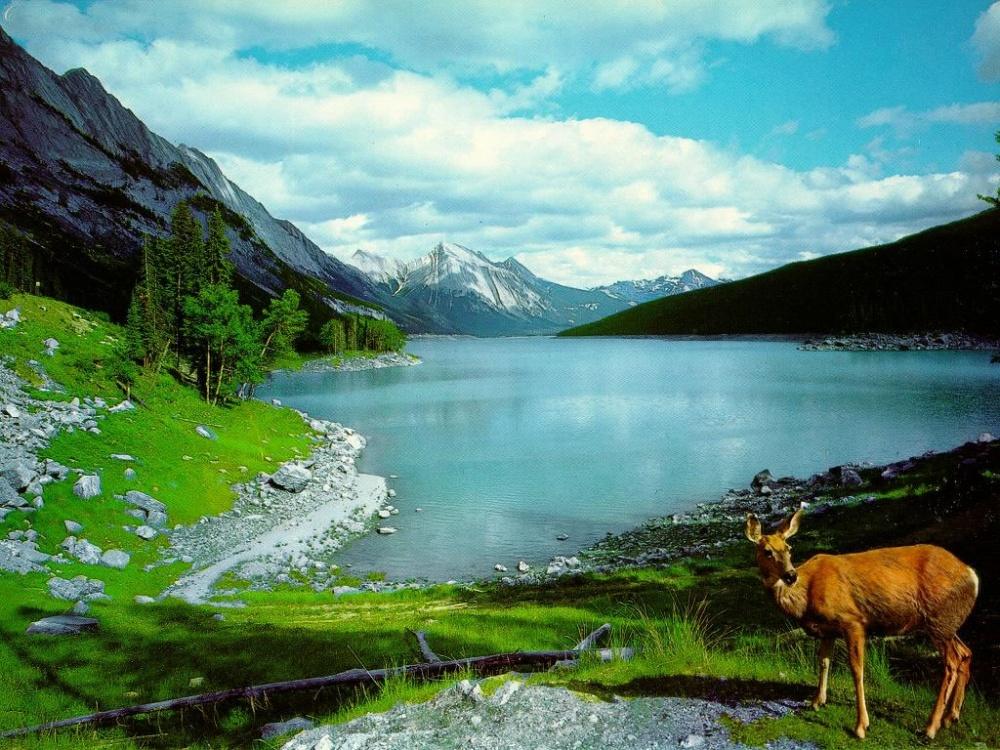 بالصور مناظر طبيعية من العالم , شوفو كيف منظر طبيعي يسر العين 6701 2