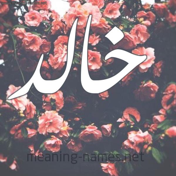 بالصور معنى اسم خالد , اجمل اسماء ولاد 2188 2