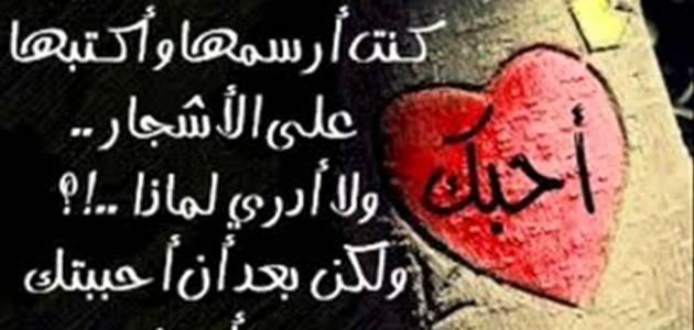 بالصور كلمات لها معنى في الحب والعشق , اجمل رسائل للحب 2221