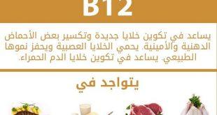 فيتامين b12 , وجبات غنية بالفيتامينات