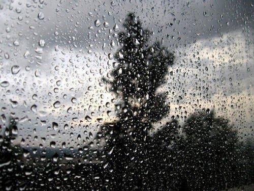 صورة صور عن المطر , خلفيات رائعه عن الشتاء