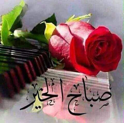 بالصور صور مكتوب عليها صباح الخير , رمزيات جميله للصباح 2736 7