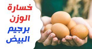 رجيم البيض , ماهى حمية البيض الغذائيه