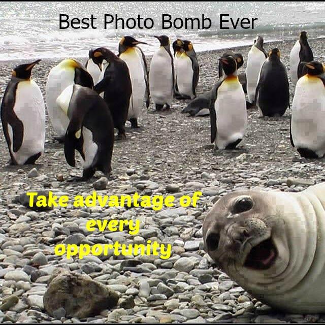 صورة لقطات مضحكة , صور مواقف وطرائف غريبه