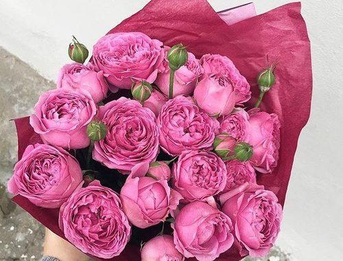 46bacaaebd90 صور ورد جميل في باقا زهور مميزة ميكسا ك