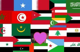 بالصور رموز الدول العربية , اكواد الاتصال بالبلاد العربيه 3058 2 310x205