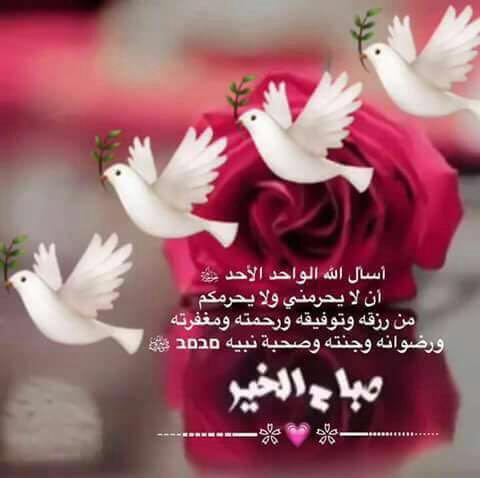 بالصور صباح الخير مع دعاء , اجمل الادعية الصباحية 3209 8