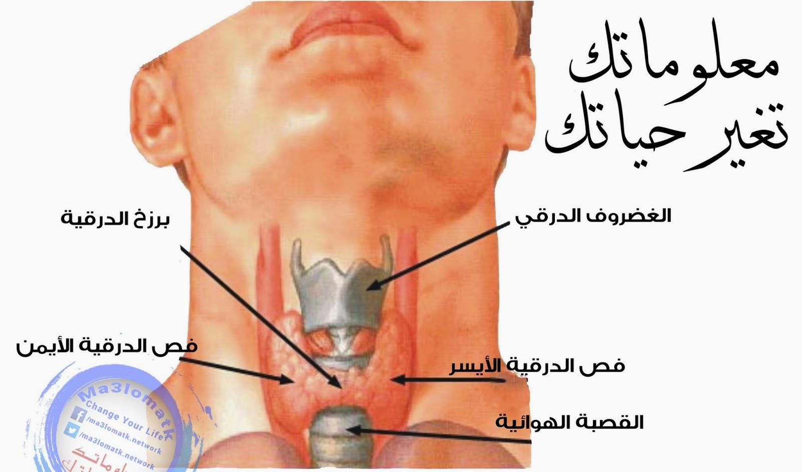 صوره مرض الغدة الدرقية , اعراض الغدة الدرقية