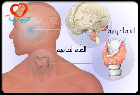 بالصور مرض الغدة الدرقية , اعراض الغدة الدرقية 3226 3