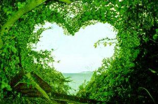 صورة صور طبيعة جميلة , صور حدائق رائعة