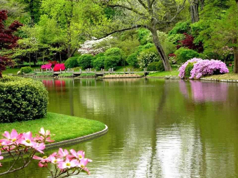 بالصور صور طبيعة جميلة , صور حدائق رائعة 3856 13