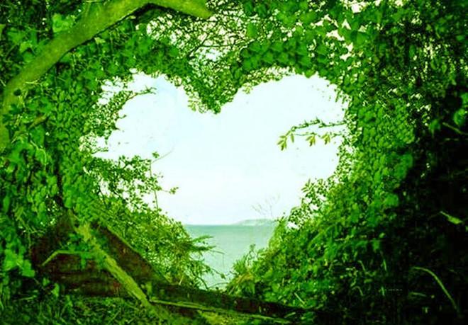 بالصور صور طبيعة جميلة , صور حدائق رائعة 3856