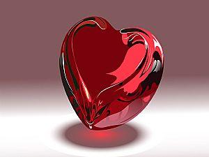 بالصور صور قلب الانسان , اكثر الاعضاء حيوية في الجسم 3893 2