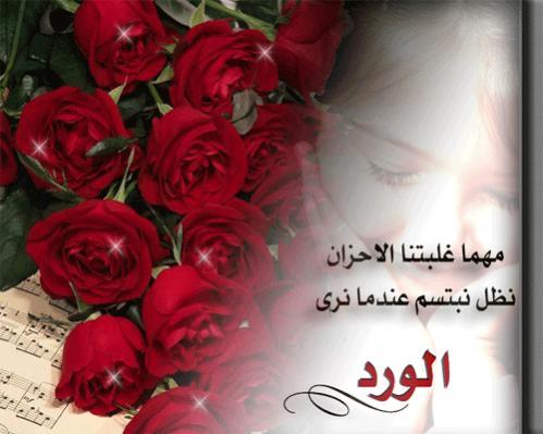 بالصور حكم عن الورد , احلى كلام عن الورد 3897 2
