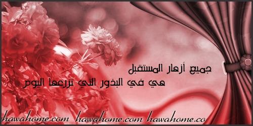 بالصور حكم عن الورد , احلى كلام عن الورد 3897 3