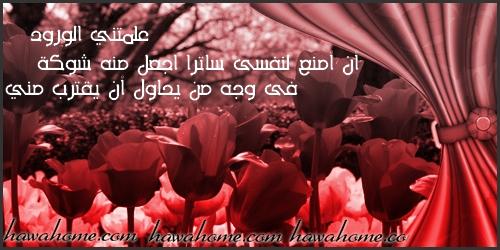 بالصور حكم عن الورد , احلى كلام عن الورد 3897 5