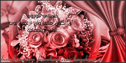 بالصور حكم عن الورد , احلى كلام عن الورد 3897 6
