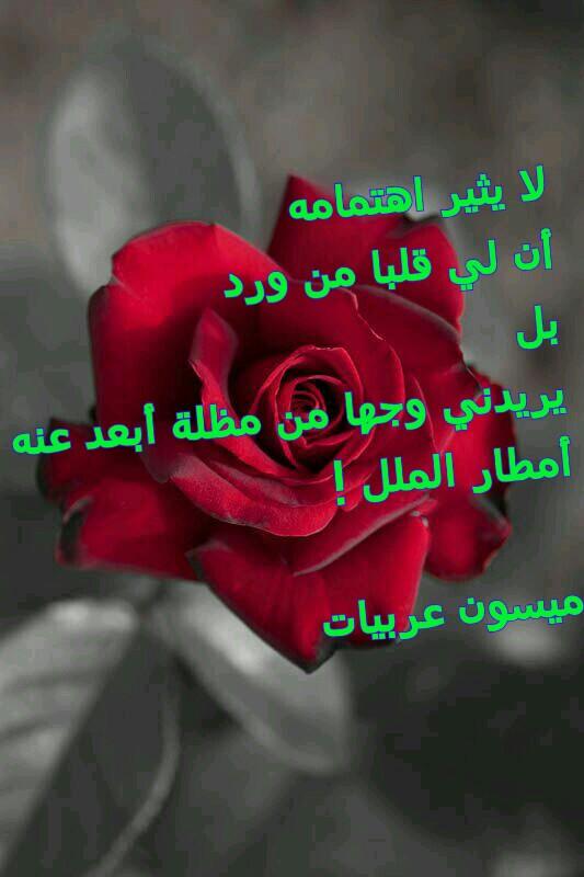 بالصور حكم عن الورد , احلى كلام عن الورد 3897