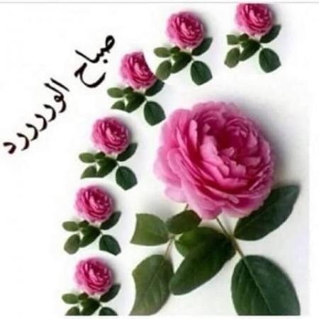 بالصور صور صباح للحبيب , اجمل صباح على عيونك 3907 6