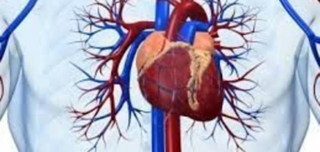صور علاج مرض القلب , امراض اكثر خطورة