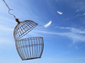 بالصور صور عن الحرية , مقولات عن الحرية 4026 3