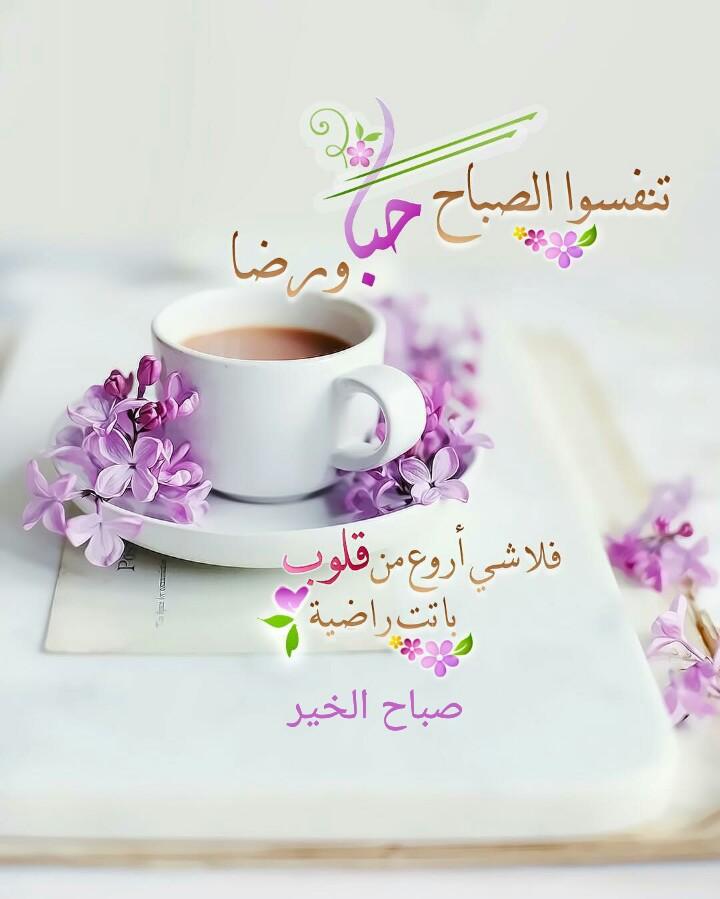 بالصور صور عن صباح الخير , صور راقيه عن صباح الخير 4272 7