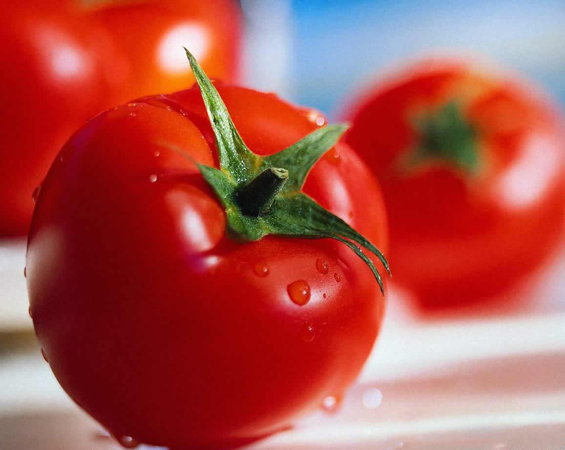 صور فوائد الطماطم , اهم فوائد الطماطم