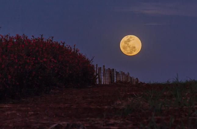 صور صور عن القمر , صور رائعه عن جمال القمر
