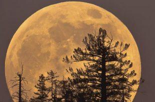بالصور صور عن القمر , صور رائعه عن جمال القمر 4658 22 310x205