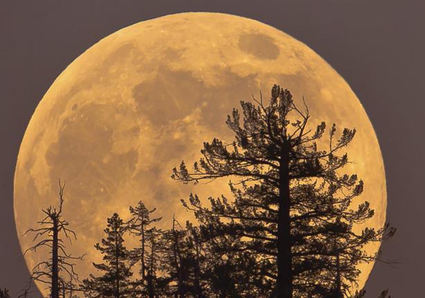 بالصور صور عن القمر , صور رائعه عن جمال القمر 4658