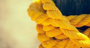 صورة خلفية صفراء , خلفيات HD بلون الاضفر