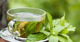 صوره اضرار الشاي الاخضر , تعرف على فوائد واضرار الشاي الاخضر