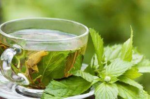 صورة اضرار الشاي الاخضر , تعرف على فوائد واضرار الشاي الاخضر