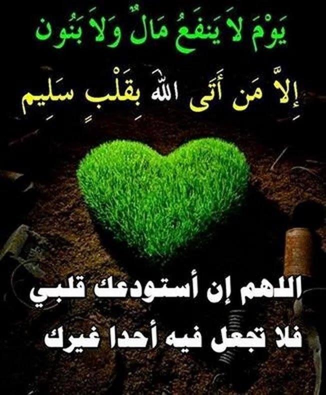 بالصور اجمل الصور الاسلامية في العالم , صور اسلامية للفيس 2532 10