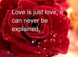 بالصور صور جميلة للحب , صور حب وغرام 279 6