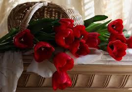 صوره صور ورد رومانسي , يا جمال وحلاوة الورد
