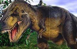 بالصور معلومات عن الديناصورات , فكرة عامة عن الديناصورات 306 12 259x165
