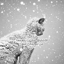 بالصور كلمات عن الشتاء , صفات فصل الشتاء 314 5