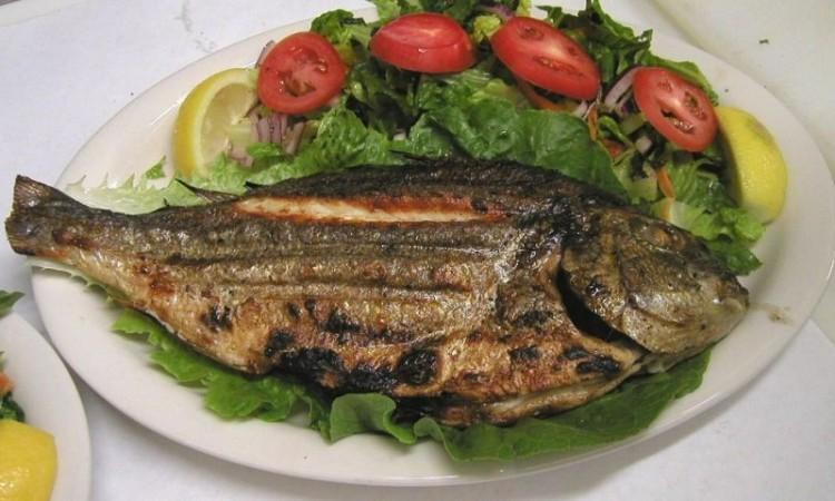 صوره فوائد السمك , اكثر من فائدة للاسماك