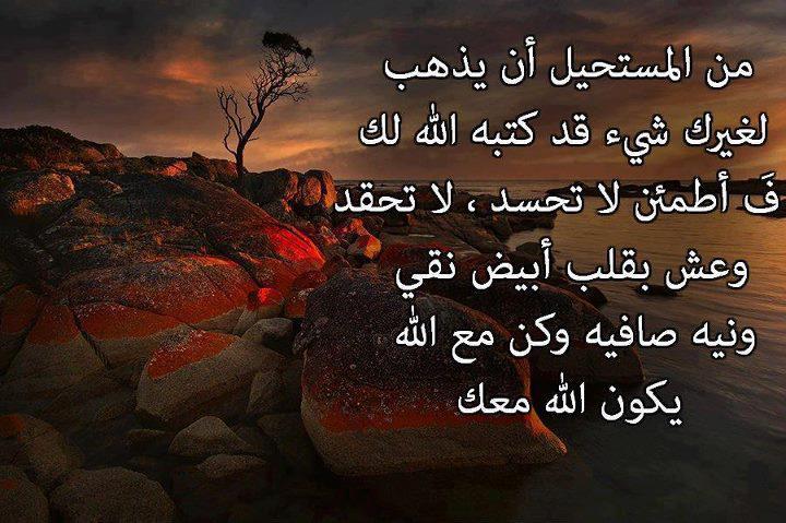 صورة حكم روعه , حكم عربية رائعة 4238 3