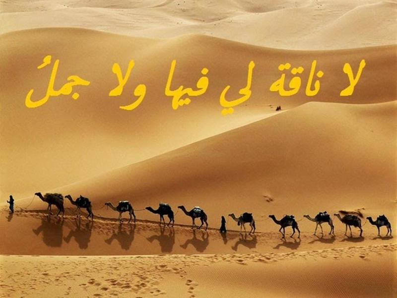 صورة حكم روعه , حكم عربية رائعة 4238 7