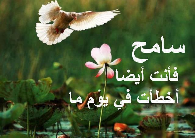 صورة حكم روعه , حكم عربية رائعة 4238 8