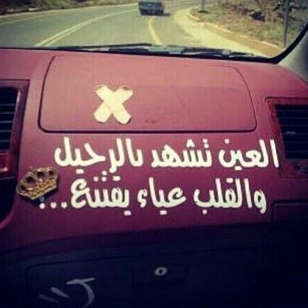 بالصور عبارات سيارات , عبارات تزين السيارات رهيييبه 4728 8