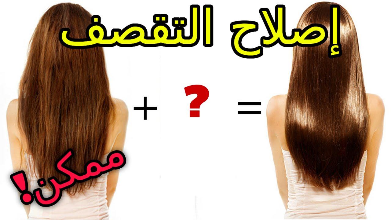 بالصور علاج تقصف الشعر , وصفات للشعر المقطع الهايش 4806 1