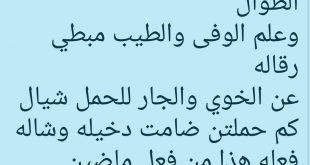 بالصور قصيدة مدح الخوي , اروع ابيات شعريه فى حب الاخ 5143 3 310x165