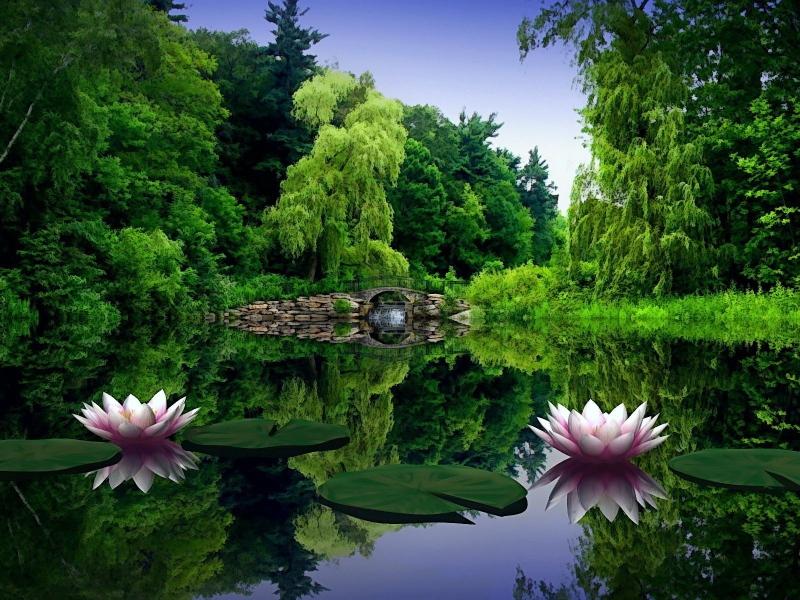 صور خلفيات طبيعة , خلفيات جميلة طبيعية