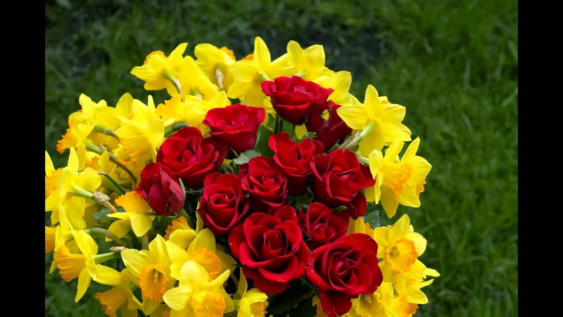 صورة اجمل صور الورد , الجمال يتكلم بحب 5915 7
