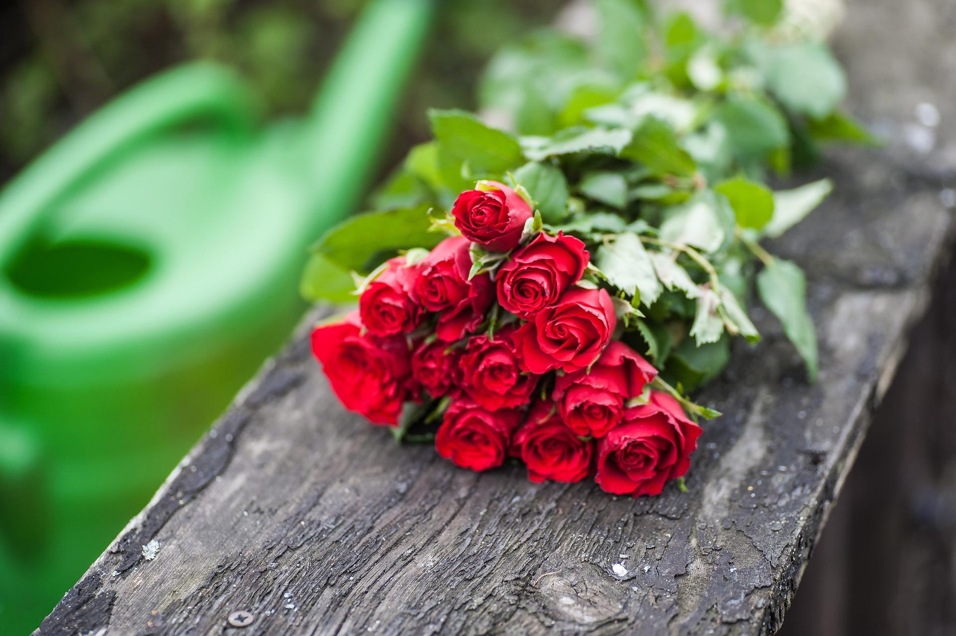 صورة اجمل صور الورد , الجمال يتكلم بحب 5915