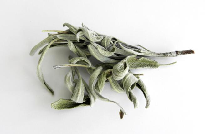 صورة عشبة الميرمية , اعشاب مفيدة وطبية
