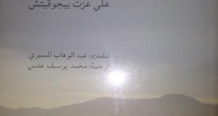 صوره الاسلام بين الشرق والغرب , الاسلام الوسطى الجميل